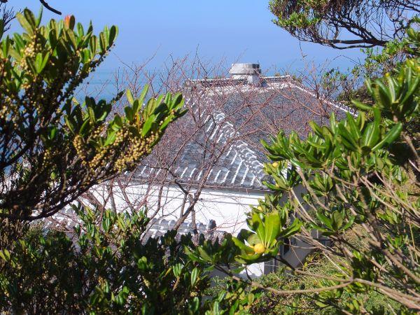 明治生まれの屋根は、長年の風雪にも耐えて、今もなお瀟洒な姿を見せてくれます。