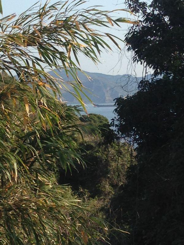 現在の番所谷からは、残念ながら長崎湾方面を見晴らすことはできません。